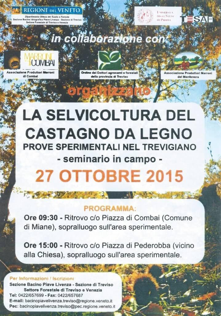 castagno_da_legno